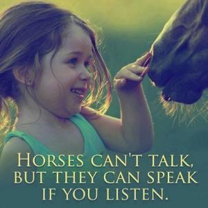 Horses Can Speak If You Listen