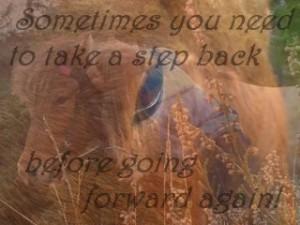 Kijk eens in de Spiegel van jezelf via een paard