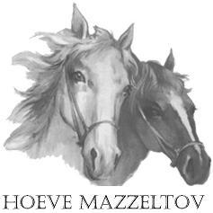 logo custom 25